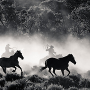 Running In The Dust.