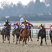 Lingfield 6th December 2012