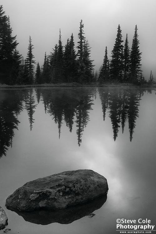 Reflection Pond - Mount Rainier National Park