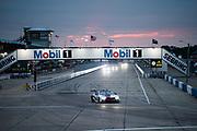 March 12-15, 2019: 1000 Miles of Sebring, World Endurance Championship. 81 BMW Team MTEK, BMW M8 GTE, Martin Tomczyk, Nick Catsburg, Alexander Sims