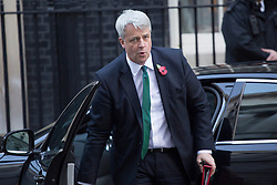 © licensed to London News Pictures. London, UK 29/10/2013. Andrew Lansley, Leader of the Commons attending to a cabinet meeting in Downing Street on Tuesday, 29 October 2013. Photo credit: Tolga Akmen/LNP