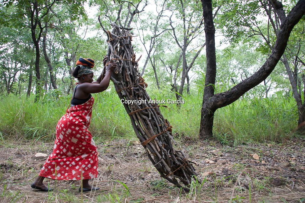 A Lagoa Niassa, mundialmente tamb&eacute;m chamado de Lagoa Malawi  &eacute; um dos grandes lagoas africanas. Ela faz fronteira com o Malawi, a Tanzania e ao Mo&ccedil;ambique.<br /> A lagoa esta na raizes da historia do homem africano na Vale do Rift. A lagoa esta famos&iacute;ssima porque ela tem muita esp&eacute;cies de pesca e se encontra mais de 30% das esp&eacute;cies de ciclid&eacute;os do mundo. <br /> O n&iacute;vel da &aacute;gua varia com as esta&ccedil;&otilde;es do ano e tem ainda um ciclo de longa dura&ccedil;&atilde;o, com os n&iacute;veis mais altos em anos recentes, desde que existem registos.<br /> Tem tempestades, ondas e praia de areia branca. Es um mar de agua doce com um sirito muy forte a onde se instalo um dos Lodge o mais incr&iacute;vel da Africa. O Nkwichi Lodge na costa mo&ccedil;ambicana.