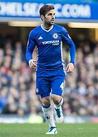Football - 2016 / 2017 Premier League - Chelsea vs. West Bromwich Albion<br /> <br /> Cesc Fabregas of Chelsea at Stamford Bridge.<br /> <br /> COLORSPORT/DANIEL BEARHAM
