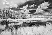Wetlands<br />Sioux Narrows<br />Ontario<br />Canada