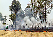GILGIL, KENYA March 16th 2013 - Person tries to stop bushfire from spreading in Gilgil town, Rift Valley, Kenya