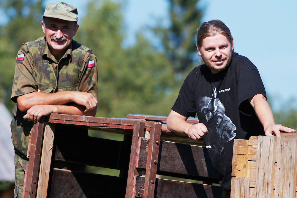 Member of staff of Bieszczady National Park and Maciej Januszczak, Carpathian Wildlife Research Station (Stacja Karpacka), watching  the release of two European bison or Wisent (Bison bonasus) donated by Prague Zoo, into an accomodation enclosure in Bieszczady National Park. Bukowiec, Poland.