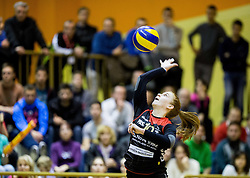 Sara Najdic of Nova KBM Branik during volleyball match between Nova KBM Branik Maribor and OK Luka Koper in Final of Women Slovenian Cup 2014/15, on January 18, 2015 in Sempeter v Savinjski dolini, Slovenia. Photo by Vid Ponikvar / Sportida