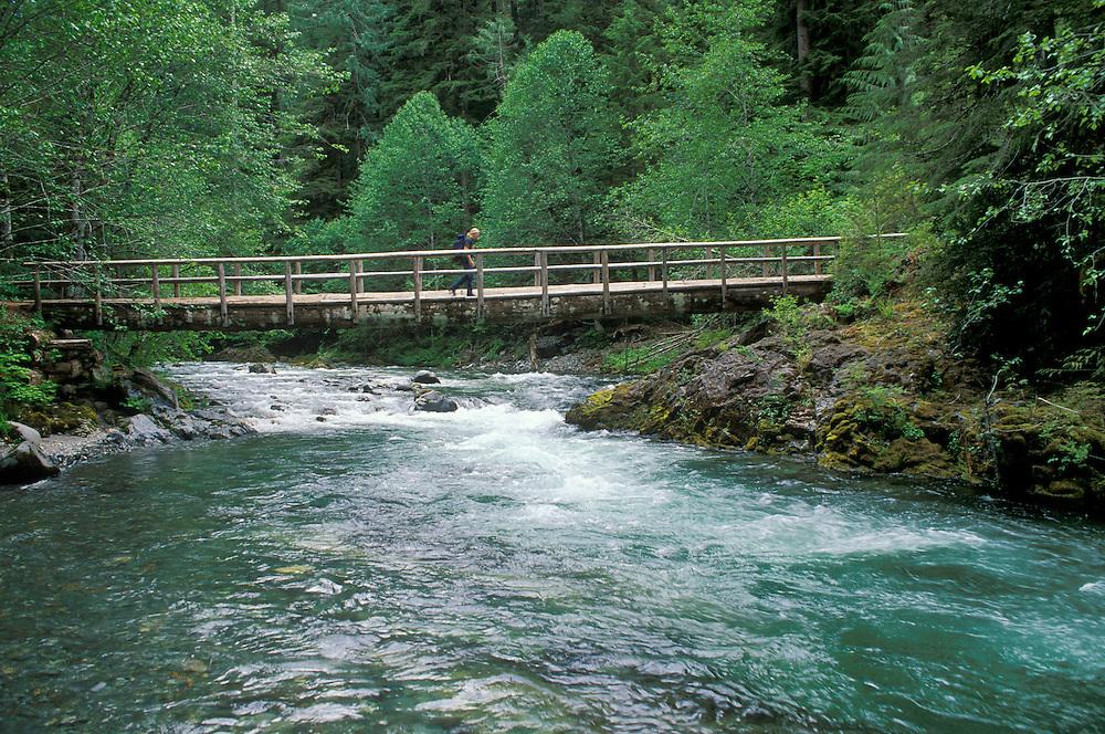 Hiker on trail bridge over Little North Santiam River; Opal Creek Wilderness, Cascade Mountains, Oregon.