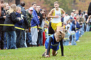 A Fort LeBoeuf runner crawls to the finish line at the 2008 District 10 cross country championship held at Buhl Park in Sharon, PA.