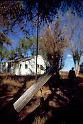 An old tree swing hangs in a vacant farm yard homestead in eastern Colorado.