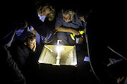 Moth trapping evening organised by Surrey Wildlife Trust on Ockham Common. Surrey, UK.