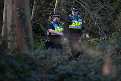Denham, UK. 3 February, 2020. Police liaison officers monitor environmental activists from Extinction Rebellion, Save Colne Valley and Stop HS2 occupying a bridge in Denham Country Park to seek to prevent works for the HS2 high-speed rail link including the felling of 200 trees and the construction of a Bailey bridge, compounds, fencing and a parking area. Part of the location for the work lies within a wetland nature reserve forming part of a Site of Metropolitan Importance for Nature Conservation (SMI). In spite of a substantial police presence, HS2 were not able to proceed with the work for the day.