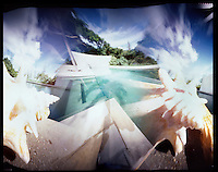 pinhole image of a conch shell by the pool at the hix island house