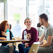 05.09. 2017.                             <br /> Limerick Institute of Technology welcomed its first year students onto Campus today 5th Sept 2017. <br /> Enjoying their time on their first day were Business and Event Management students, Clodagh O'Grady, Charleville, Zoe Hassall, Mitchelstown and Hugh Boyle, Donegal. Picture: Alan Place
