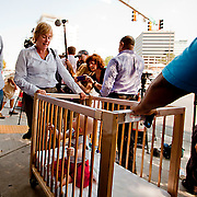 Silver Spring, Md., Sept. 1, 2010 - Children that were evacuated from thte Discovery Building make their way down Colesville Rd.