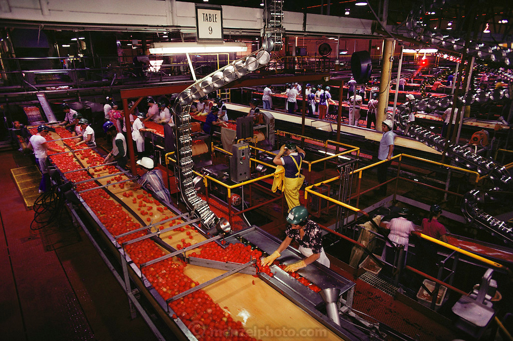 Tomatoes: Tomato cannery facility, Modesto, California, USA.