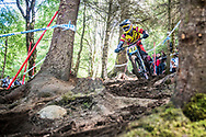 Kenta Gallagher finds his way through the woods during the qualifying round of the UCI Mountain Bike World Cup in Fort William.