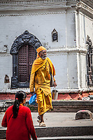 Hindus visit Pashupatinath Temple, one of the most significant Shiva Temples in the world.