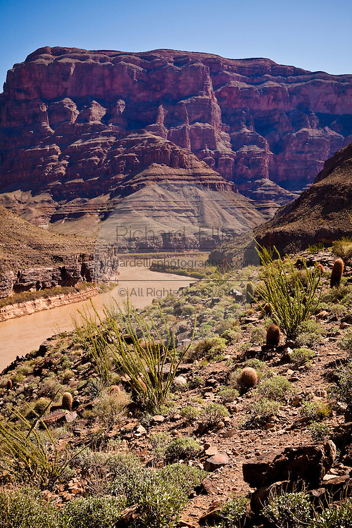 A view of the Colorado river at the base of the Bridge Canyon along the west rim of the Grand Canyon National Park inside the Hualapai Indian Reservation, Arizona, USA