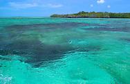 Aldabra Atoll,  The Seychelles<br /> Emerald coloured lagaoon<br /> c. Ellen Rooney