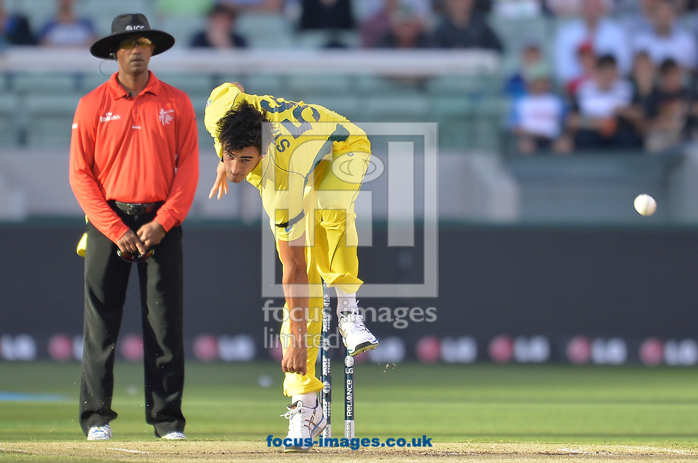 Mitchell Starc of Australia bowls during the 2015 ICC Cricket World Cup match at Melbourne Cricket Ground, Melbourne<br /> Picture by Frank Khamees/Focus Images Ltd +61 431 119 134<br /> 14/02/2015