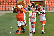 The Blackpool Mascot with blackpool team mascots  during the EFL Sky Bet League 1 match between Blackpool and Bristol Rovers at Bloomfield Road, Blackpool, England on 13 January 2018. Photo by Mark Pollitt.