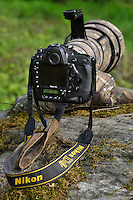 Nikon gear, Tangjiahe National Nature Reserve, NNR, Qingchuan County, Sichuan province, China