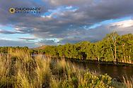 Dramatic stormy surise light strikes the Big Hole River near Melrose, Montana, USA