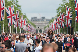 © Licensed to London News Pictures. 11/06/2016. London, UK. Huge crowds awaiting The Red Arrows and a fleet of other aircraft perform a flypast down The Mall and over Buckingham Palace during Trooping of the Colour on The Queen's 90th birthday.  Photo credit : Stephen Chung/LNP