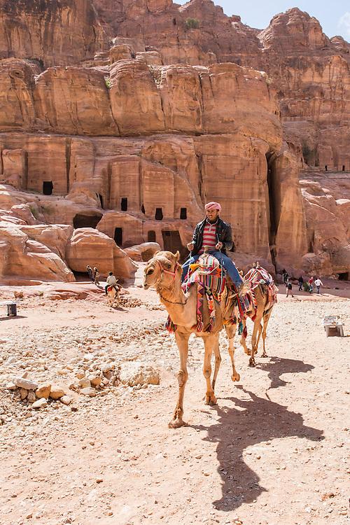 Jordan, Petra, Tour guide leads camels for tourist rides through Petra amid ancient ruins