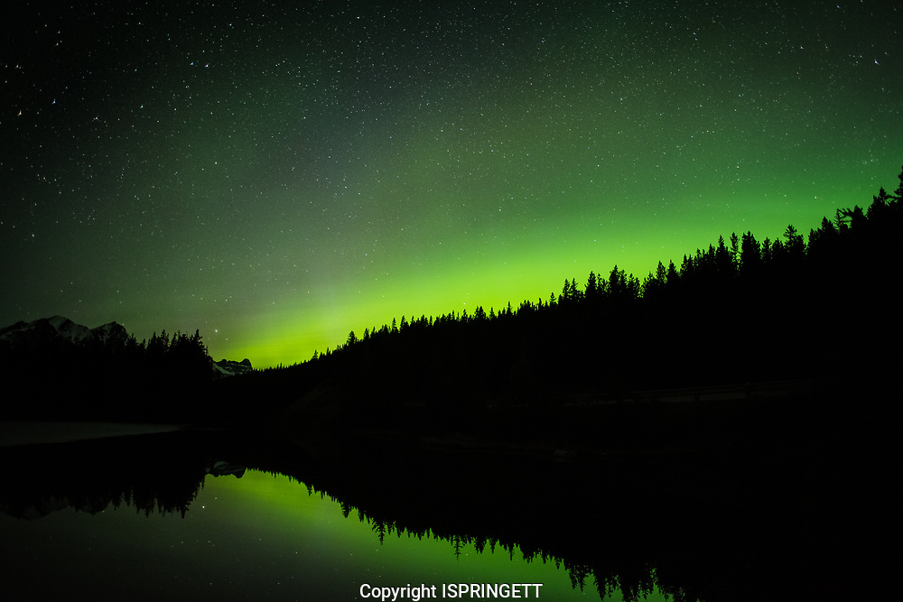 Aurora at Herbert Lake., Alberta, Canada, Isobel Springett