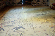 The Church of the Multiplication of the Loaves and Fishes, is a Roman Catholic church located in Tabgha, on the northwest shore of the Sea of Galilee in Israel. The modern church rests on the site of two earlier churches. The mosaic floor
