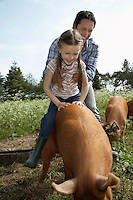 Father helping daughter (5-6) to ride pig in sty