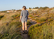 One woman walking on through vegetation on cliff above the Atlantic Ocean on coastal long distance footpath trail, The Fisherman's Walk or Ruta Vicentina, near Rogil, Algarve, Portugal, Southern Europe.