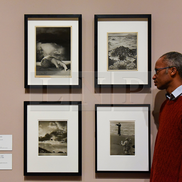 "© Licensed to London News Pictures. 19/11/2019. LONDON, UK. A staff member views four images ""Untitled"", 1934-36, by Dora Maar. Preview of the first UK retrospective of Dora Maar (born Henriette Theodora Markovitch, 1907-97) whose photographs and photomontages became celebrated icons of surrealism.  Over 200 of her works are on display in a career spanning more than six decades at Tate Modern 20 November to 15 March 2020.  Photo credit: Stephen Chung/LNP"