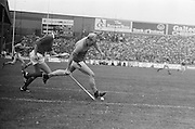 Wexford picks the slitor off the ground with the hurl followed by Cork during the All Ireland Senior Hurling Final, Cork v Wexford in Croke Park on the 5th September 1976. Cork 2-21, Wexford 4-11.