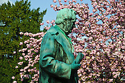 Heidelberg, Altstadt, Bunsen-Denkmal, Frühling, Kischblüte, Baden-Württemberg, Deutschland.| .Heidelberg, old town, Bunsen memorial, cherry flowers, Baden-Wurttemberg, Germany.