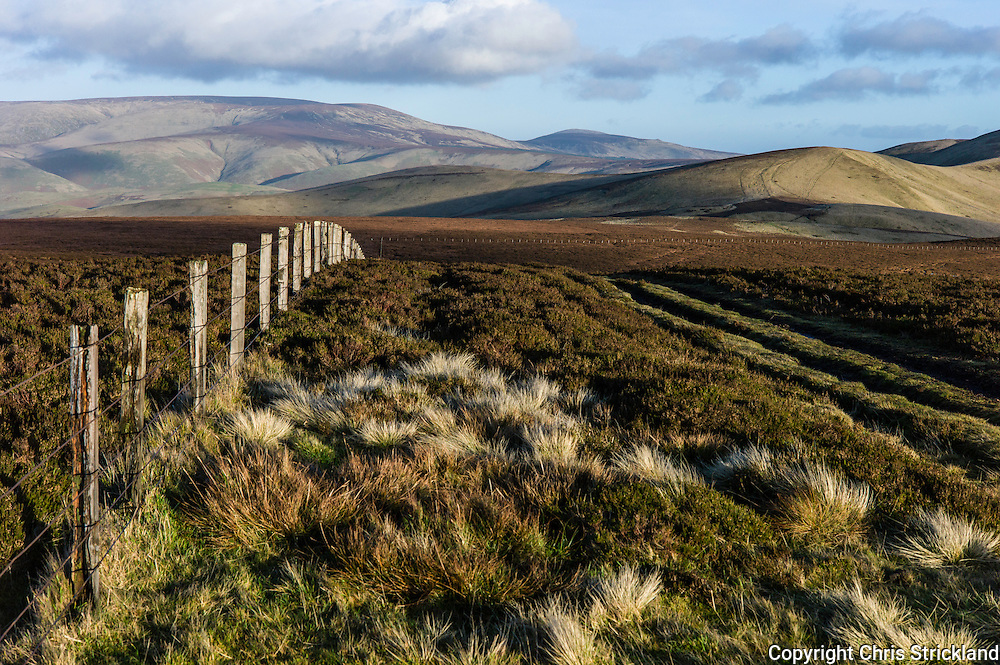 Mozie Law (552m), Cheviot Hills, Hownam, UK. 23rd December 2015. Looking east along the Pennine Way and the Anglo Scot border from Mozie Law.