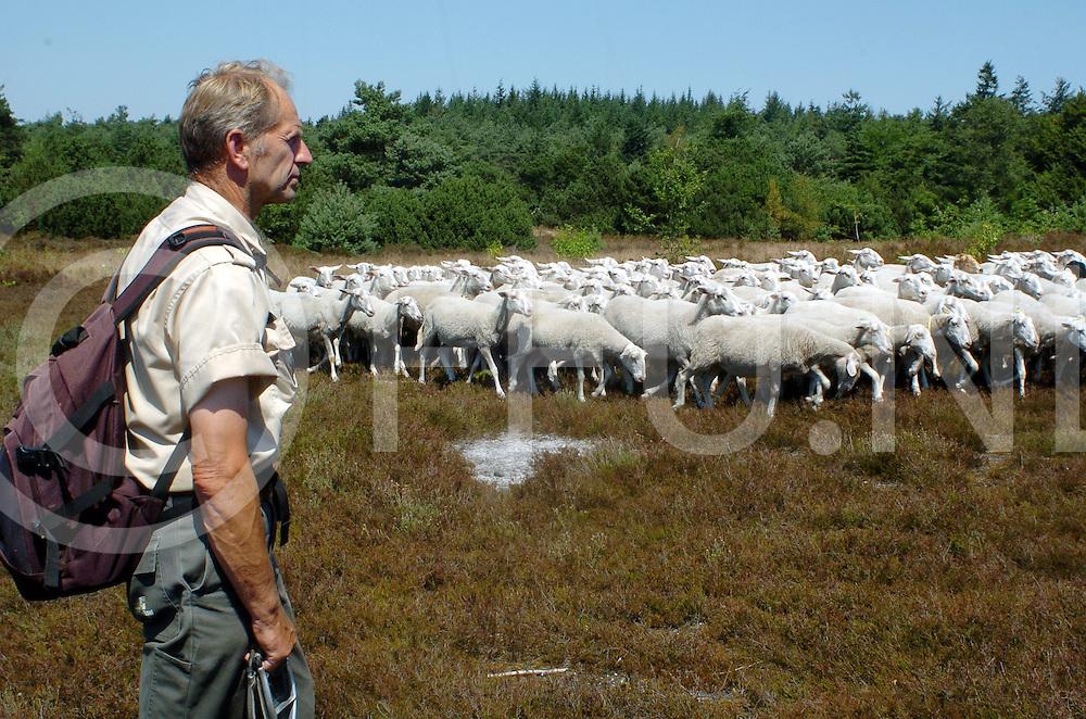 LEMELE<br /> Schaapsherder Teun Heuver met zijn schapen op de Lemelerberg in de buurt van het restaurant,<br /> <br /> Editie: NY <br /> <br /> fotografie frank uijlenbroek&copy;2006 michiel van de velde<br /> TT20060719