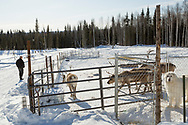 Permafrost scientist Kenji Yoshikawa at his farm outside Fairbanks, Alaska, USA.