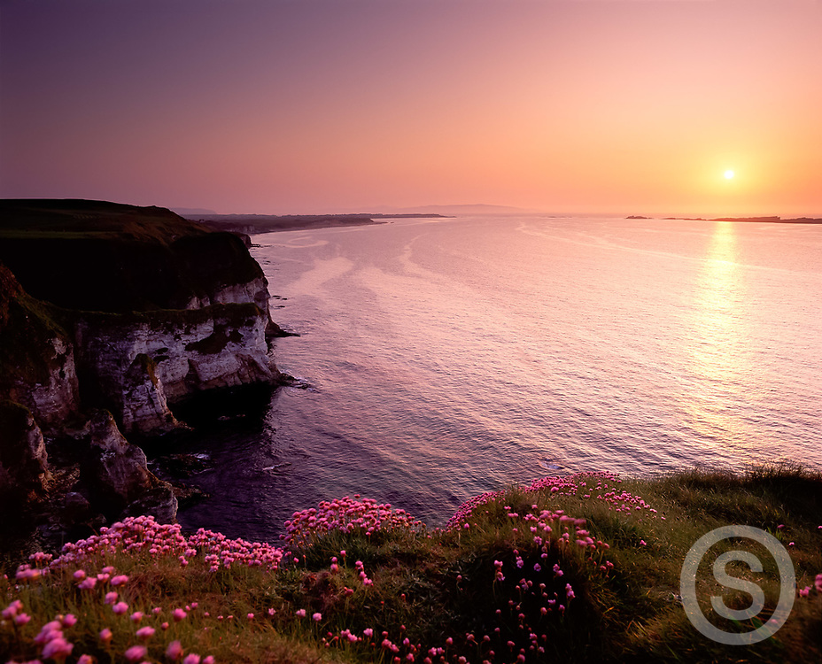 Photo: Chris Hill, Whiterocks, County Antrim