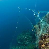 Ghost net entangled on reef, Tenggol Island, Tanjong Jara Resort, Terengganu, Malaysia.