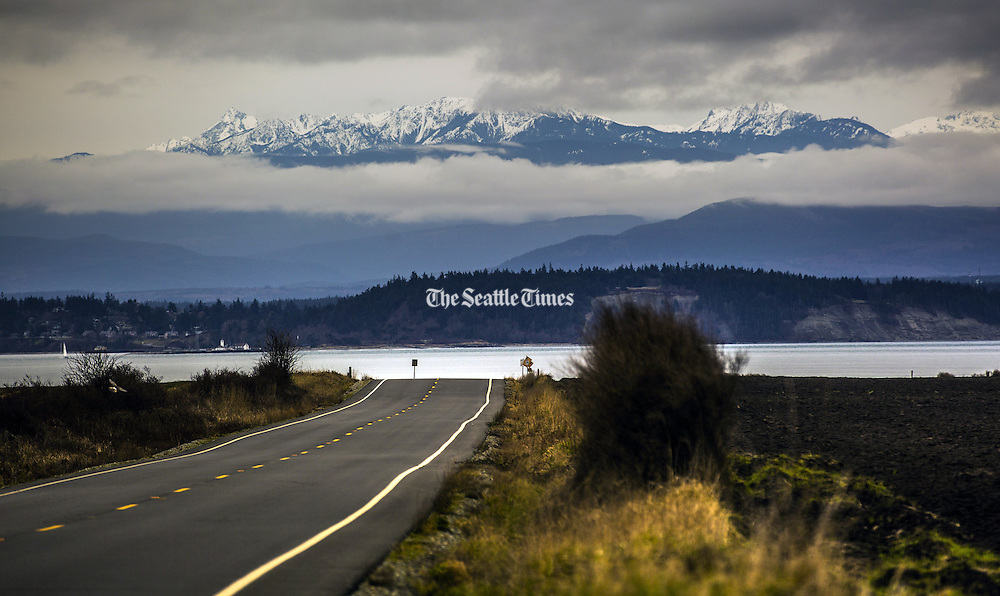 The Olympic Mountains loom in the distance as seen from Ebey Road, between Coupeville and Ebey's Landing. Ebey's Landing National Historical Reserve takes in public and private lands stretching across a narrow neck of Whidbey Island between Admiralty Inlet and Penn Cove. (Mike Siegel/The Seattle Times)