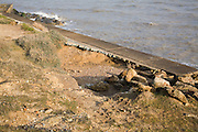 Sea wall being undercut by scouring of wave backwash, East Lane, Bawdsey, Suffolk, England