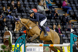 BROCKS Karl Jun. (GER), Lordina E<br /> Oldenburg - AGRAVIS Cup 2019<br /> Preis der Nordwest-Zeitung<br /> Int. Springprüfung - Youngster Tour<br /> 01. November 2019<br /> © www.sportfotos-lafrentz.de/Stefan Lafrentz