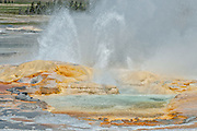 Clepsydra Geyser at Fountain Paint Pot in Yellowstone National Park