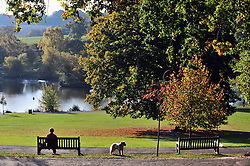 © Licensed to London News Pictures. 28/10/2016<br /> Autumn Weather Kent. <br /> Sunny Autumn weather at Dunorlan Park,Royal Tunbridge Wells,Kent.<br /> <br /> Photo credit :Grant Falvey/LNP