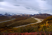Colors of fall on the tundra with the Alaska Range in the background, in Denali National Park, Alaska, September 3, 2017. <br /> Photo by David Lienemann
