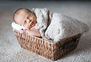 Aiden :: Wausau, Wisconsin Newborn Photography
