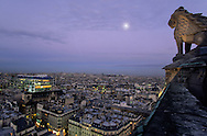 France. Paris. elevated view. paris cityscape view from Saint Jacques tower.